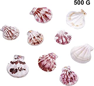 SUPVOX 1 Pack 500g Beach Seashells Shell Beads DIY Craft Charms for DIY Craft Pendant Making Home Party Decoration (Random Style)