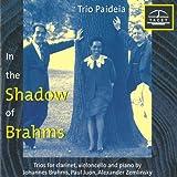 Vol. 1-Im Schatten Von Brahms