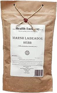 Marsh Labrador Herb (Rhododendron Tomentosum) - Health Embassy - 100% Natural (50g)