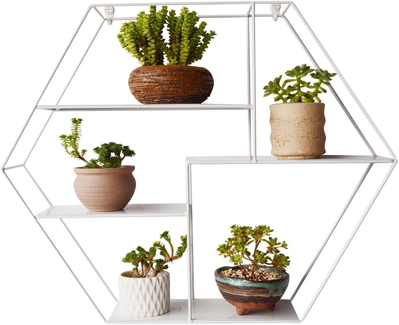 Flower racks - Creative Design Indoor Balcony Multi - Storey Wall Hanging Iron Flower Shelf Living Room Meat Plant Group (color   White)