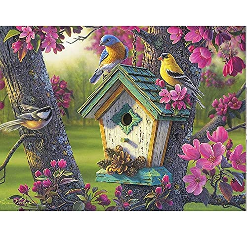 Paint by Numbers Kit for Adults Kids Colorful Birds and Birdhouses Canvas Oil Painting,Paint by Numbers for Adults with Paint Brushes,Acrylic Paints 16x20inch