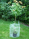Wühlmauskorb Wurzelschutz der Jungen Bäume und Pflanzen vor...