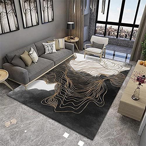 Alfombras De Habitacion Infantil Alfombra Salon Diseño gráfico Abstracto de Rayas de Oro Blanco Negro Dorado Alfombra Pelo Corto 160X200cm