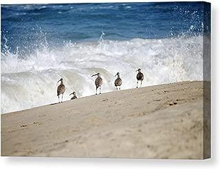 Coastal Home Decor Crashing Waves Photo on CANVAS Pacific Ocean Birds on Sandy Beach Photographic Print Blue White Beige Ready to Hang