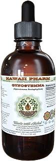 Sponsored Ad - Gynostemma Alcohol-Free Liquid Extract, Gynostemma (Gynostemma Pentaphyllum) Dried Leaf Glycerite 2 oz