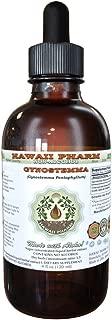 Gynostemma Alcohol-FREE Liquid Extract, Gynostemma (Gynostemma Pentaphyllum) Dried Leaf Glycerite 2 oz