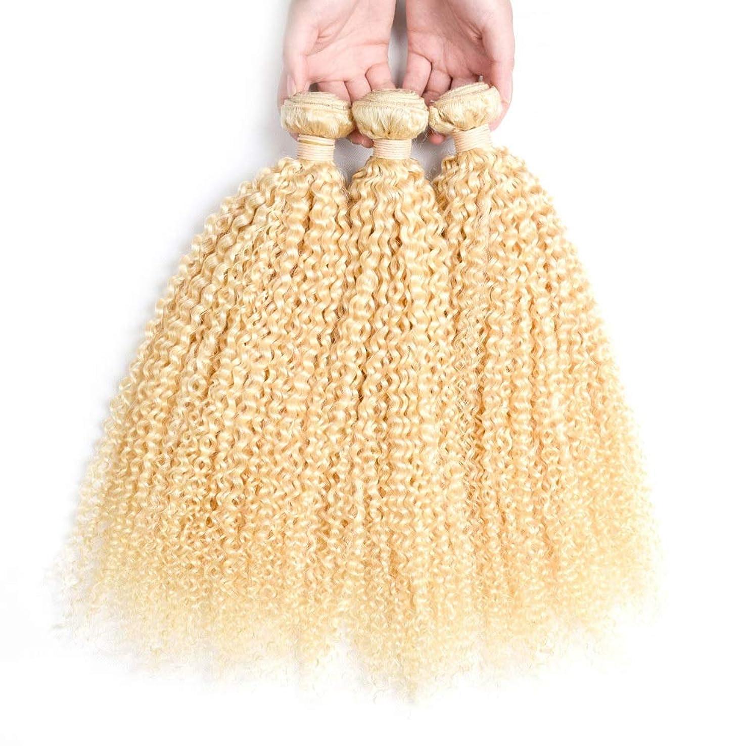 に対応する光沢不名誉なHOHYLLYA ブロンドの人間の髪織りバンドル本物の変態カーリーヘアエクステンション横糸 - #613ブロンドの髪(1バンドル、10-26インチ、100g)ブロンドのかつら (色 : Blonde, サイズ : 10 inch)