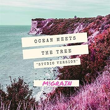 Ocean Meets the Tree (Studio Version)