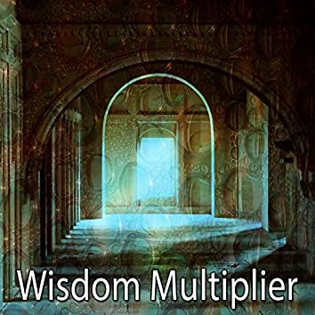 Wisdom Multiplier