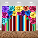 Mocsicka 5x3ft Mexican Fiesta Backdrop Colorful Stripes Paper Flower Fiesta Birthday Photo Backdrops Cinco De Mayo Mexican Festival Party Decorations Banner Photography Background