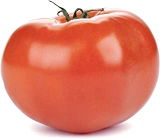 Best micro tom tomato seeds Reviews