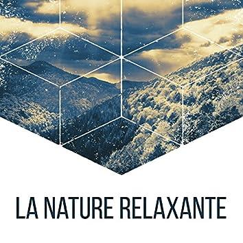 La nature relaxante – Sons apaisantes de la nature, Musique de la nature, Musique d'ambiance, Détente
