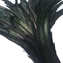 long black feathers bulk
