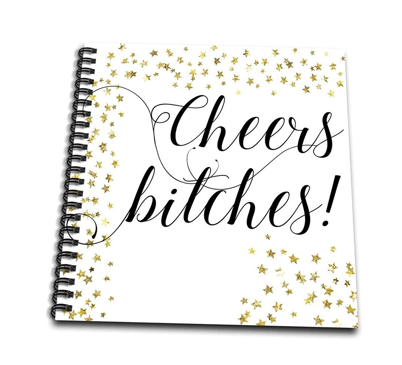 3dRose db_264052_2 Cheers Bitches Party Bachelorette Holiday Gift Memory Book, 12x12