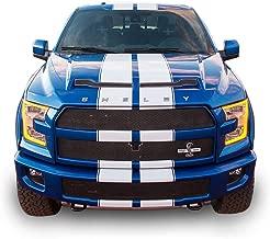 ford f 150 stripes