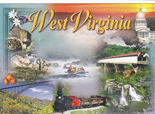 STATES0WV83 - WEST VIRGINIA [ ONE 1 CARD ] Shaluta and WV Dept. of Tourism. Evergreen State, State Flower: Coast Rhododendron - A U.S. State POSTCARD from HibiscusExpress