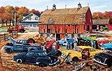 SUNSOUT INC Barnyard Gems 1000 pc Jigsaw Puzzle