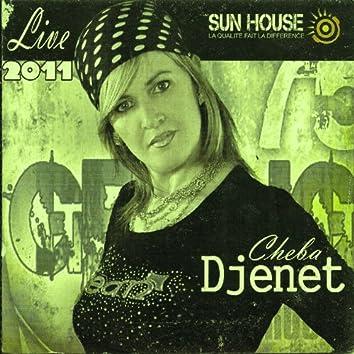 Cheba Djenet Live 2011