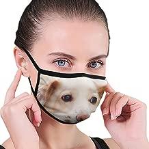 Anti Flu And Saw Dust Masks - Reusable Unisex Adult Mouth Mask With Black Border Sad Dog