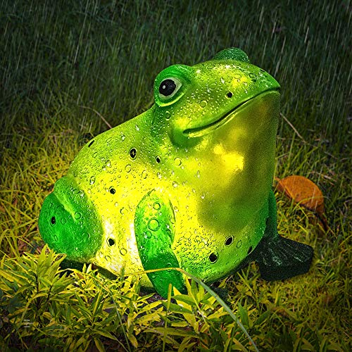 cute frog lights for the garden