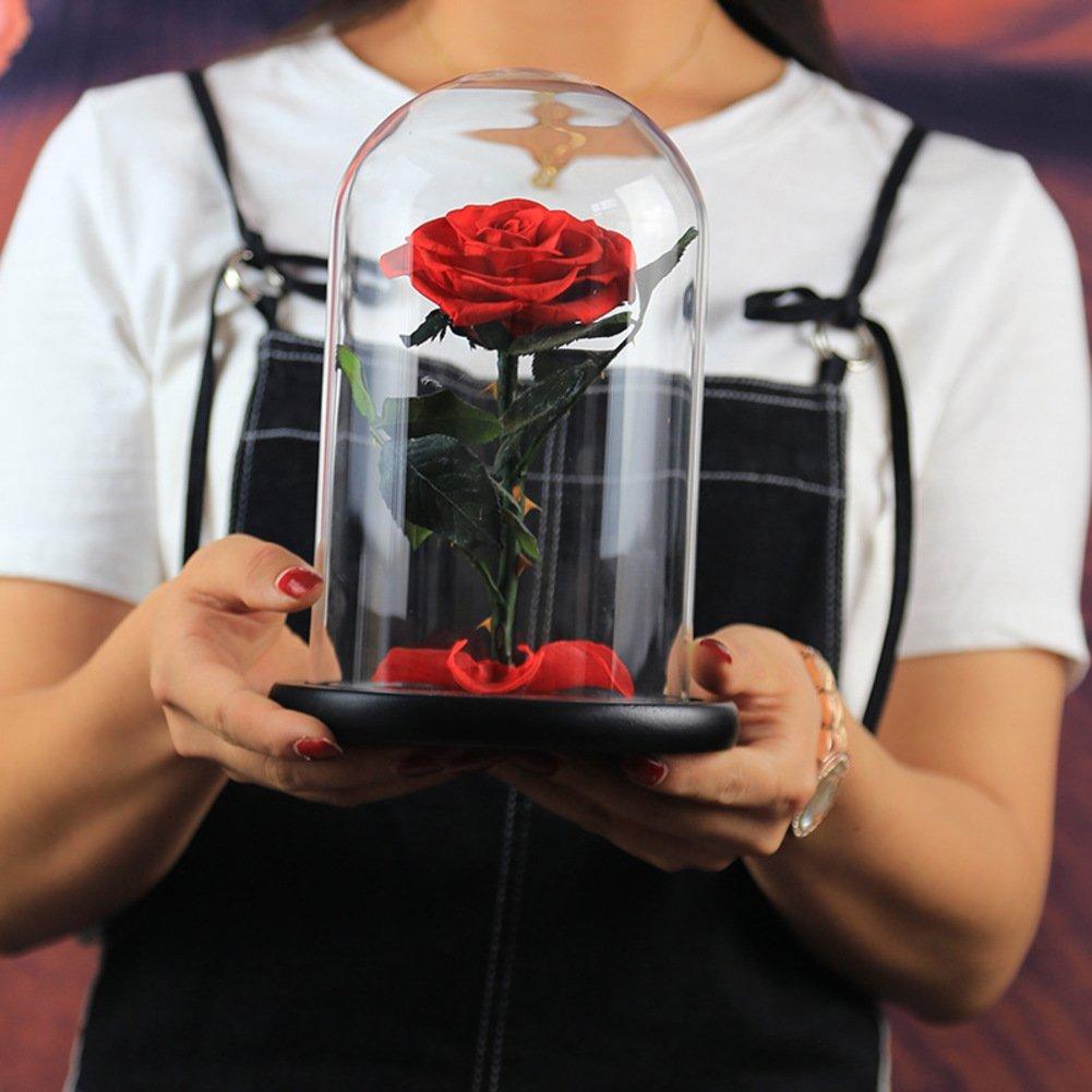HY&PPJQ Rosa Sola Flor eterna,Acabado Cubierta de Cristal Rosa ...