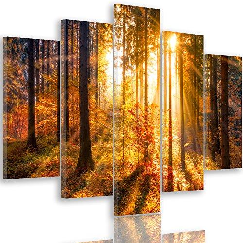 Feeby Frames, Quadro multipannello di 5 Pannelli, Quadro su Tela, Stampa Artistica, Canvas Tipo A, 100x200 cm, Bosco, Alberi, Natura, Sole, Marrone