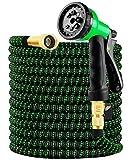 Manguera Jardín, Manguera De Jardín Extensible 30M/100FT con 8 Funciones De Cabeza De Aeroso,Profesional De Tela Expandible De Doble Látex con Núcleo Metálico (Verde, 30M/100Ft)