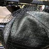 HOSD Fascinante Sombrero Negro Chic Cuero Boina Francesa con Velo Mesh Show Double Layer Mujer Beret Beanies Cap