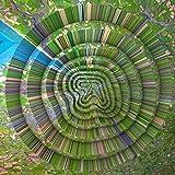 Aphex Twin: Collapse Ep (12''+Mp3) [Vinyl Maxi-Single] (Vinyl (Standard Version))