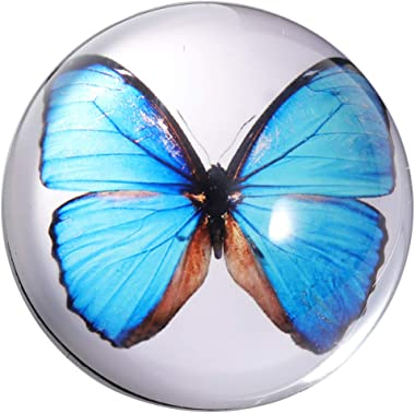 Waltz&F Crystal Blue Butterfly Specimen Paperweight Galss Globe Hemisphere Home Office Table Decoration 2.7''