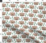 Wombat, Braun, Niedlich, Tier, Eukalyptus, Blatt,