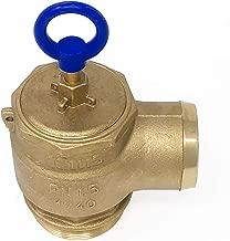 Brass Pressure Relief Valve, 300 CFM, 2