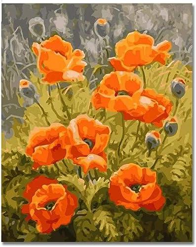 NGDDXTG Peinture numérique de Fleurs à Couleurier par numéros sur Toile, Peinture Murale à l'huile de Bricolage, peintures d'art