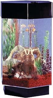 Midwest Tropical Hexagon Aqua Scape Aquarium