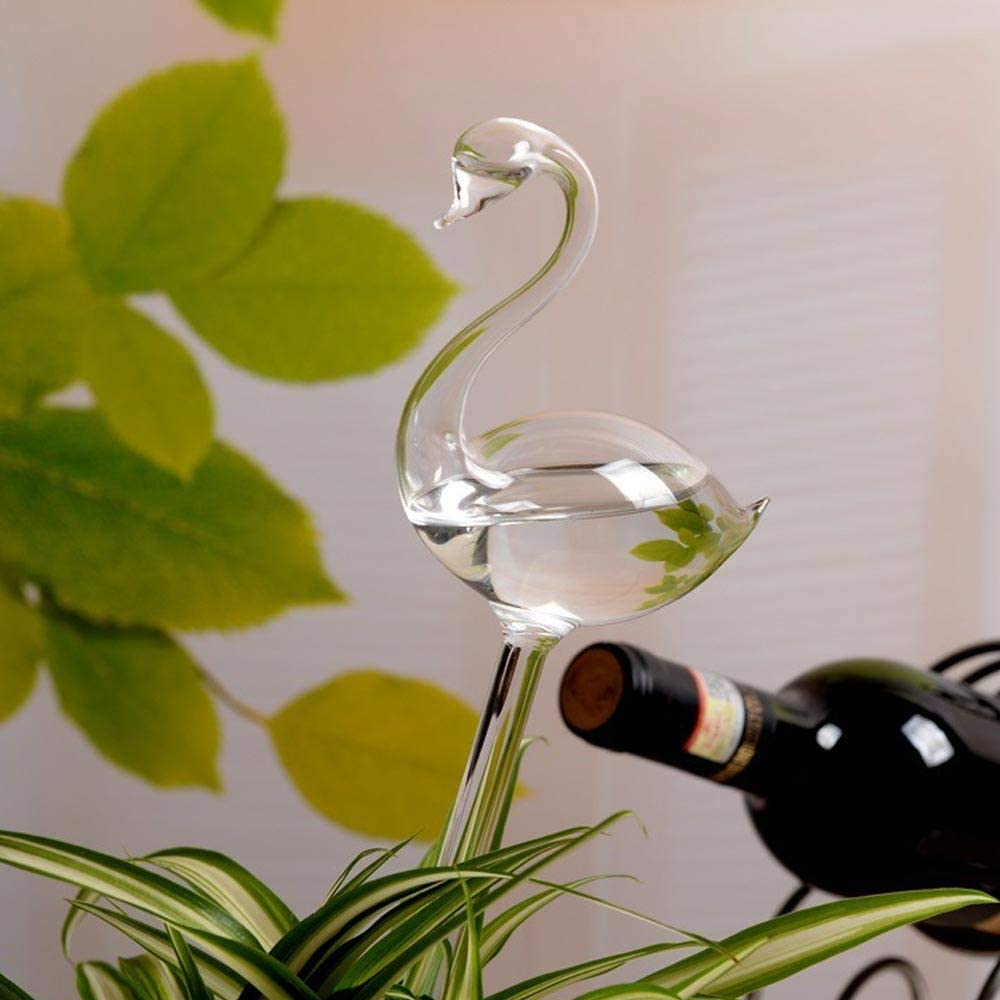 Dumcuw Plant Self-Watering Globes Device,Clear Glass Automatic Flowers Feeders,Water Watering Stakes Bulb,Outdoor Indoor Slow Plant Waterer for Plants Spike
