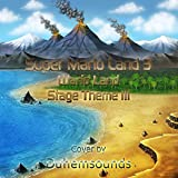Stage Theme III (From 'Super Mario Land 3 : Wario Land')