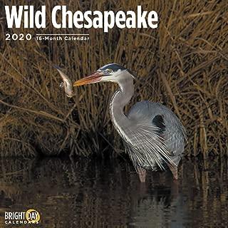 2020 Wild Chesapeake Calendar 16 Month 12 x 12 Wall Calendar by Bright Day Calendars (Calendars for a Cause Wall Calendar)
