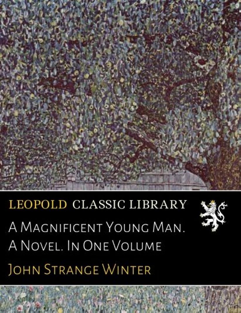 ユーモラス印象派インスタンスA Magnificent Young Man. A Novel. In One Volume
