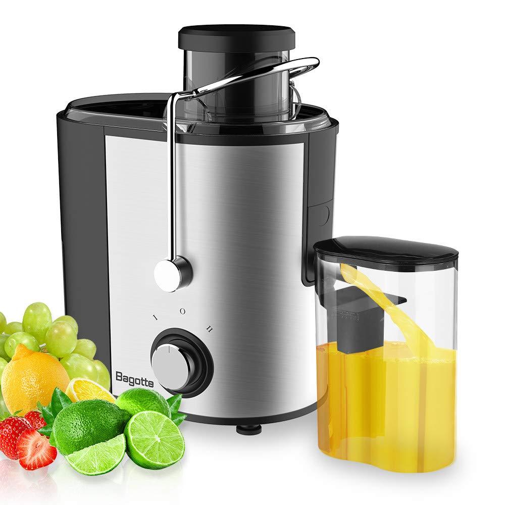 Sallydream- Licuadora para Verduras y Frutas, 600W Licuadora ...