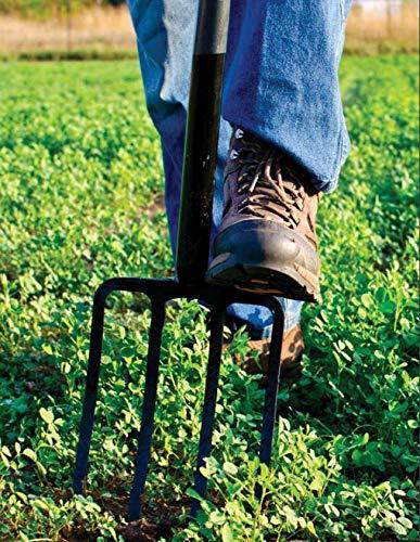TABOR TOOLS J59A Steel Shaft Garden Digging Fork