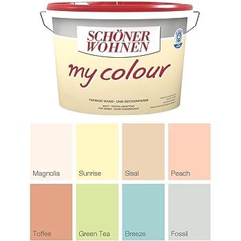 Schoner Wohnen Wandfarbe My Colour 5 Liter Zarte Farben Green Tea Matt Amazon De Baumarkt