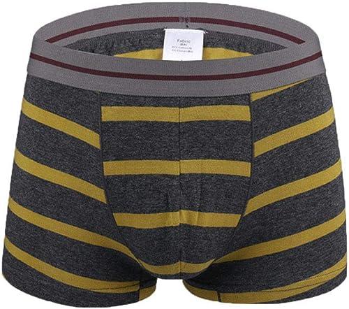 Gikmhyb des Hommes VêteHommests Hommes Coton sous-vêteHommests Extra grand Boxer Le Plus Confortable (2-Pack)