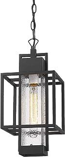"Osimir Outdoor Pendant Light Fixture, 1 Light Exterior Hanging Lantern Porch Light, 14"" Outside Lighting for House in Blac..."