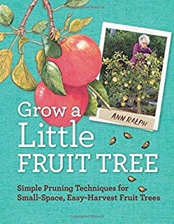 Best fruit trees for small spaces Reviews