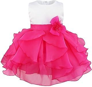 iixpin Mädchen Partykleid Baby Prinzessin Ärmellos Organza Blumenmädchenkleid Tutu Taufkleid mit Abnehmbarer Blume Brosche Hochzeit Festzug