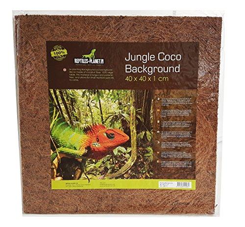 Reptiles Planet Hintergrund für Reptilien/Amphibien Dschungel Coco Background 40 x 40 x 1 cm