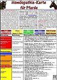 Homöopathie für Pferde - Tierheilkunde-Karte -
