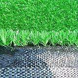 YNGJUEN 10 mm Kunstrasens gefälschte Plastik Rasen Kunstrasen Baumschule Dachterrasse for die Außenwand dekorativen Teppichschoner (Size : 2mx6m) - 5