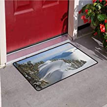 RelaxBear Winter Commercial Grade Entrance mat Pacific Ocean Meets The Mountains Vancouver British Columbia Canada for entrances garages patios W19.7 x L31.5 Inch White Olive Green Blue