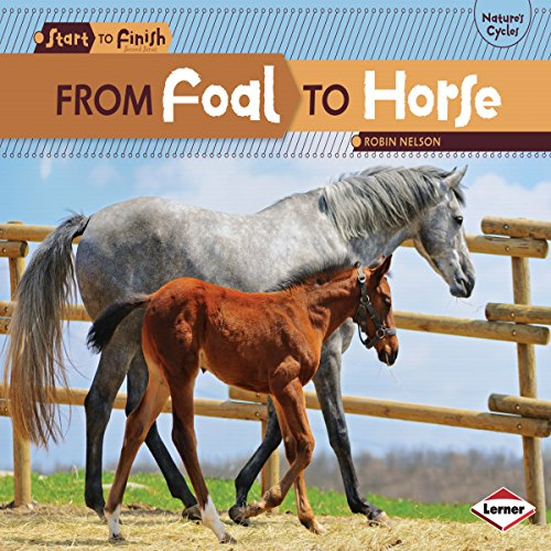 From Foal to Horse copertina